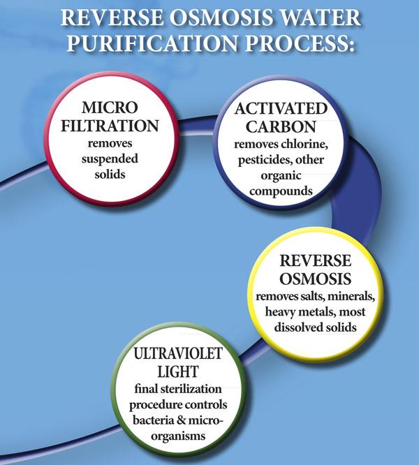 osmosis-process